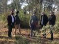 El Consell Comarcal de la Selva neteja 55 hectàrees per crear franges perimetrals antiincendis