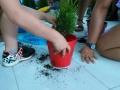 El Servei d'Integració en Família Extensa del Consell Comarcal de la Selva organitza una festa de clausura del Grup de Suport a Acollidors de Blanes