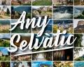 """L'Associació de Turisme la Selva Comarca de l'Aigua posa en marxa la campanya digital """"Any Selvàtic"""""""