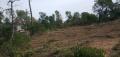 El Consell Comarcal de la Selva inicia els treballs forestals d'obertura de les franges perimetrals de seguretat en diversos municipis